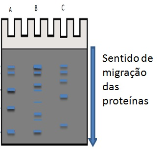 fig_7